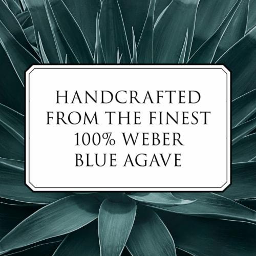Patron Reposado Tequila Perspective: top