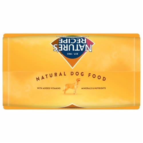 Nature's Recipe® Grain Free Salmon Sweet Potato & Pumpkin Dry Dog Food Perspective: top