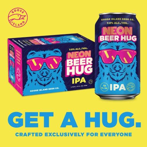 Goose Island Next Coast IPA Beer Perspective: top