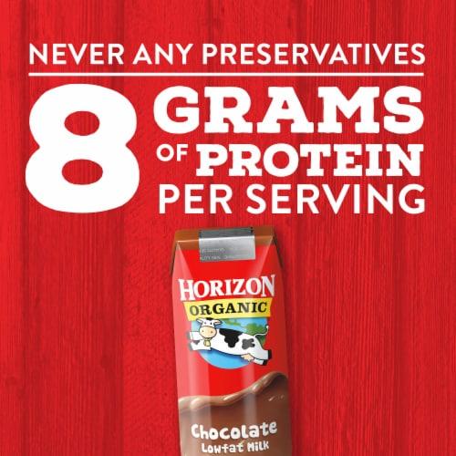 Horizon Organic DHA Omega-3 Lowfat Chocolate Milk Perspective: top