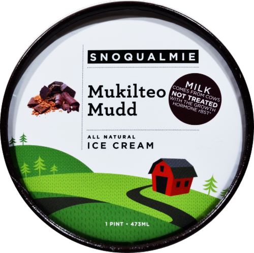 Snoqualmie Mukilteo Mudd Ice Cream Perspective: top