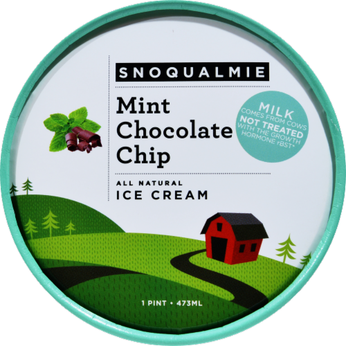 Snoqualmie Mint Chocolate Chip Ice Cream Perspective: top