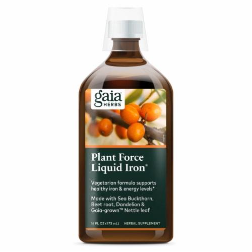 Gaia Herbs  DailyWellness™ PlantForce™ Liquid Iron Perspective: top