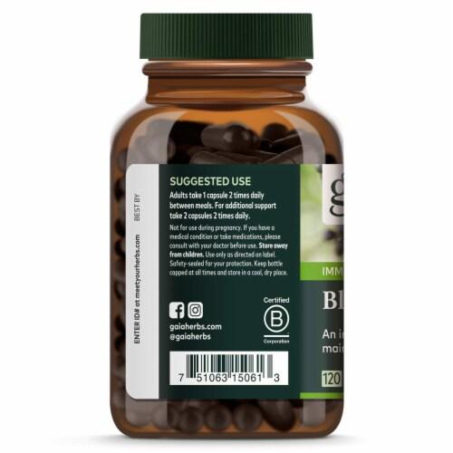 Gaia Herbs Black Elderberry Liquid Phyto Capsules, 120 Vegetarian Capsules Perspective: top