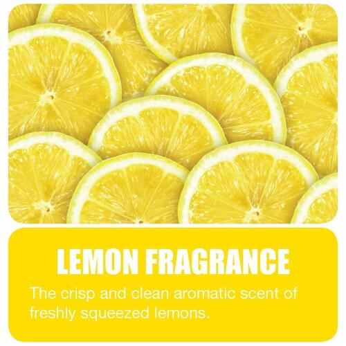 Big D Garbage Can Odor Eliminator Granular Deodorant Moisture Absorber, Lemon Perspective: top