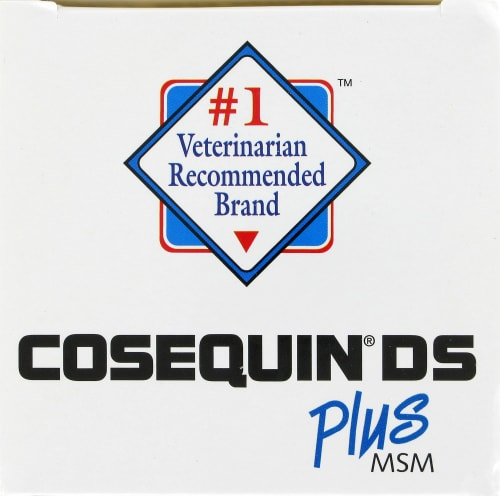 Nutramax Cosequin DS Plus MSM for Dogs Chewable Tablets Perspective: top