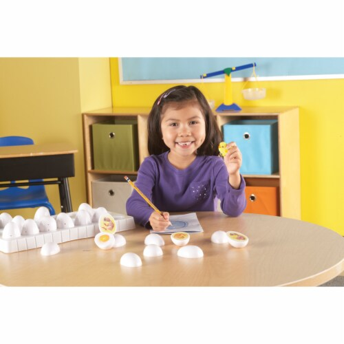 Learning Resources® Chick Life Cycle Exploration Set Perspective: top