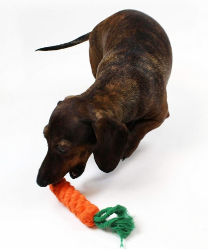 Midlee 1-Pack Rope Carrot Easter Dog Toys Perspective: top