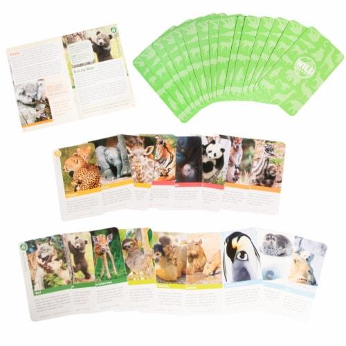 Bird Cage Press Wild Cards, Baby Animals Perspective: top