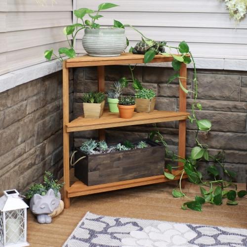Sunnydaze Meranti Wood Teak Oil Finish 3-Tier Indoor/Outdoor Corner Plant Stand Perspective: top