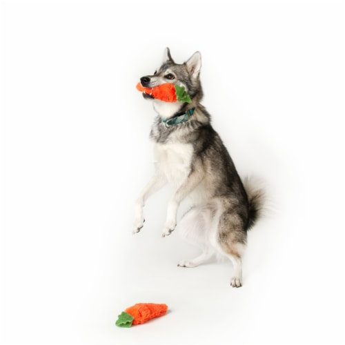Midlee Plush Carrot Easter Dog Toy- Pack of 2 Perspective: top