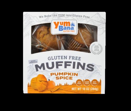 Yumbana Gluten Free Pumpkin Spice Muffins Perspective: top