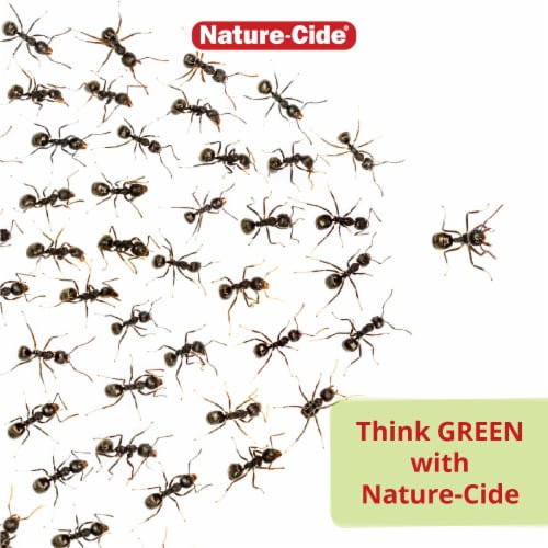 Nature-Cide All-Purpose Insecticide - Natural Roach, Spider, Mosquito and Ant Spray Perspective: top