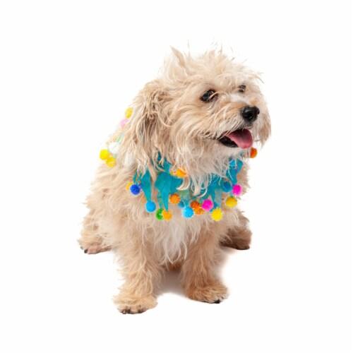 Midlee Blue Birthday Pom Pom Dog Collar (Medium) Perspective: top