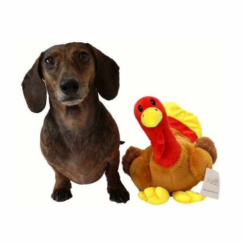Midlee Thanksgiving Turkey Dog Toy Perspective: top