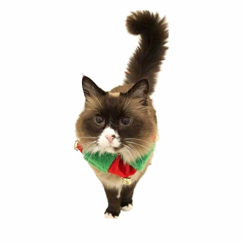 Midlee Red/Green Christmas Plush Bell Collar (Small) Perspective: top