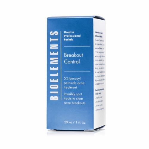 Bioelements Breakout Control  5% Benzoyl Peroxide Acne Treatment Perspective: top