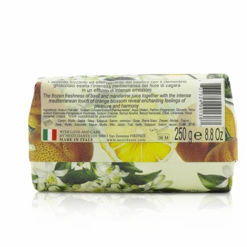 Nesti Dante Dolce Vivere Fine Natural Soap  Capri  Orange Blossom, Frosted Mandarine & Basil Perspective: top