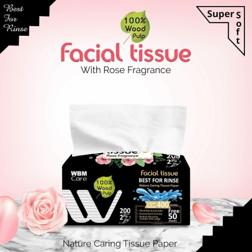 WBM Care Facial Tissue, Strong & Soft with Rose Fragrance, 2-Ply 200-Sheets/Box, Pack of 12 Perspective: top