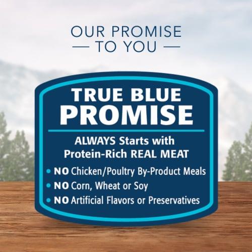 Blue Wilderness Turkey & Chicken Grill Healthy Weight Wet Dog Food Perspective: top