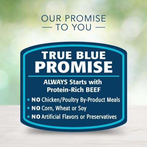 Blue Buffalo Freedom Grain-Free Recipe Dog Food Perspective: top