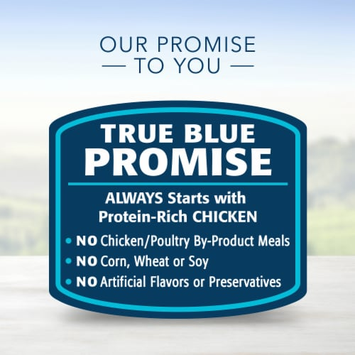 Blue Buffalo Chicken Dinner Homestyle Recipe Natural Dog Food Perspective: top