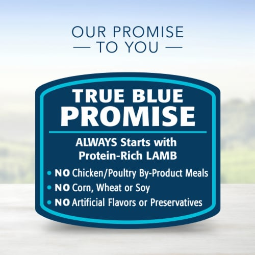 Blue Buffalo Lamb Dinner Homestyle Recipe Natural Dog Food Perspective: top