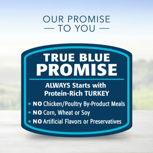 Blue Buffalo Turkey Meatloaf Dinner Homestyle Recipe Natural Dog Food Perspective: top