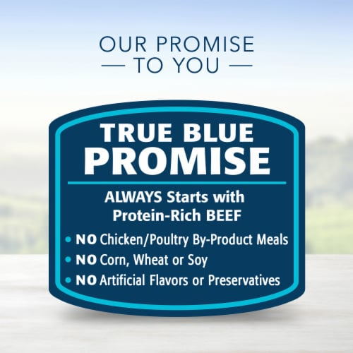 Blue Buffalo Family Favorite Recipes Backyard BBQ Dinner Wet Dog Food Perspective: top