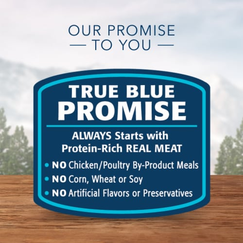 Blue Wilderness Chicken & Salmon Grill Wet Dog Food Perspective: top