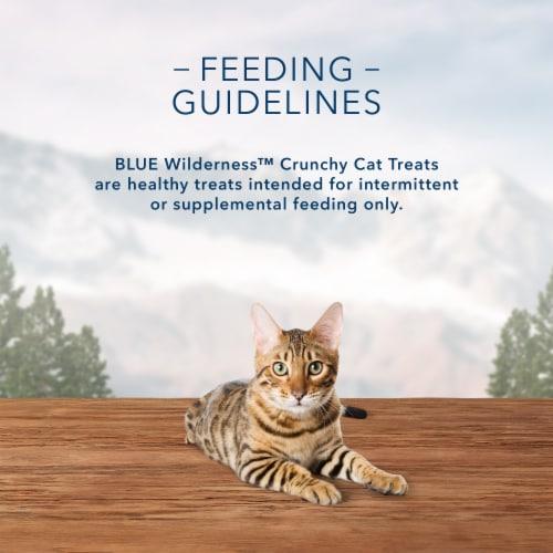 Blue Wilderness Chicken Flavor Crunchy Cat Treats Perspective: top