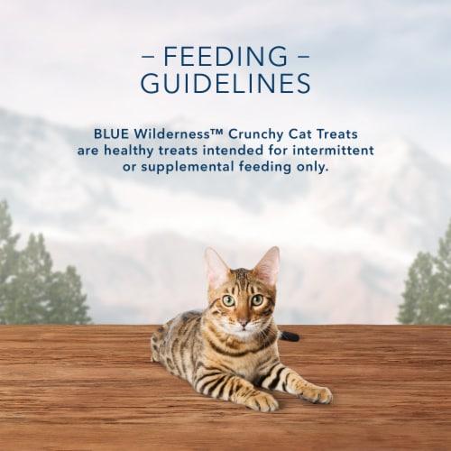 Blue Buffalo Wilderness Tasty Chicken Flavor Crunchy Cat Treats Perspective: top
