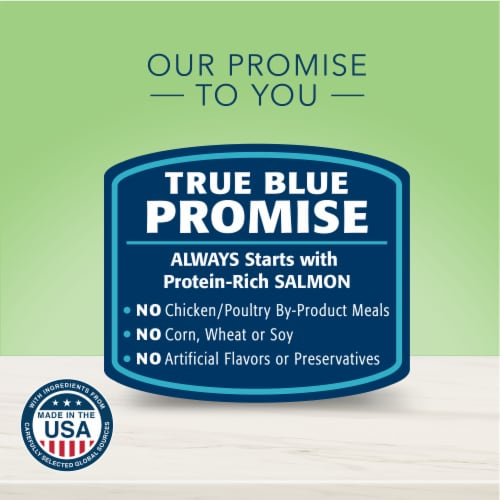 Blue Buffalo True Solutions Perfect Coat Salmon Skin & Coat Care Formula Adult Dry Dog Food Perspective: top
