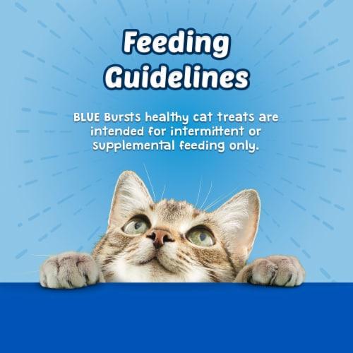 Blue Buffalo Bursts Chicken Cat Treats Perspective: top