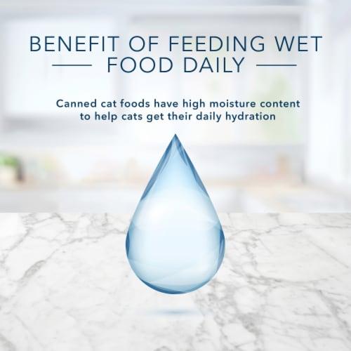 Blue Buffalo Chicken Entree in Gravy Wet Cat Food Perspective: top