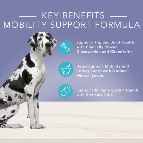 Blue Buffalo True Solutions Jolly Joints Mobility Support Formula Dog Food Perspective: top