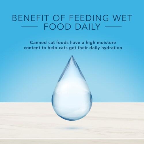 Blue Diamond True Solutions Fab Feline Chicken Natural Indoor Adult Wet Cat Food Perspective: top