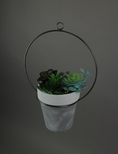 Ceramic and Metal Hoop Indoor Outdoor Hanging Planter 6 Inch Diameter Perspective: top