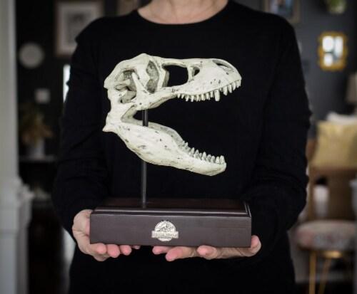 Jurassic World 9x8 Inch Tyrannosaurus Rex Skull Resin Replica Perspective: top