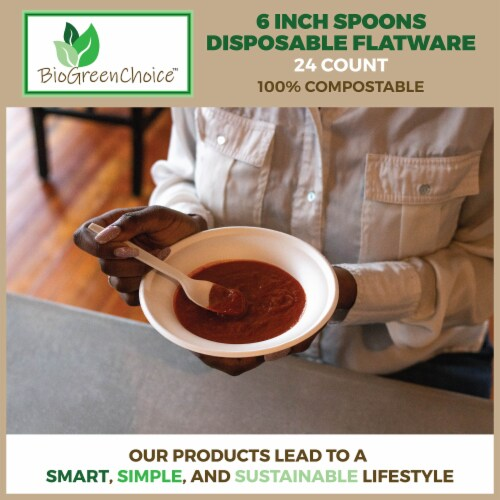 """6"""" Eco-Friendly Disposable Cutlery Spoons (480 Count) Perspective: top"""