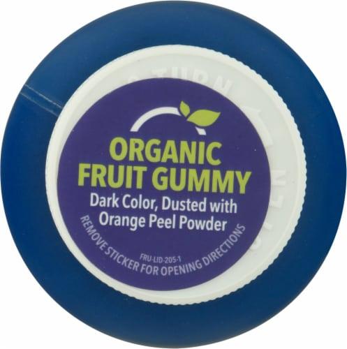 Fruily Organic Goodnight Sleep Gummies Perspective: top
