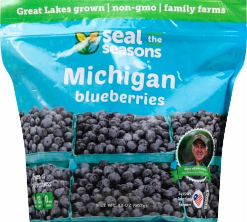Seal The Seasons Frozen Michigan Blueberries Perspective: top