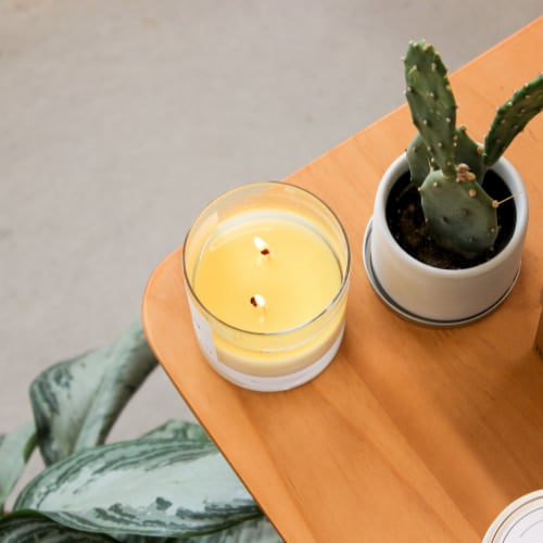 Calyan Wax Co. Evergreen + Eucalyptus Glass Soy Candle - White Perspective: top