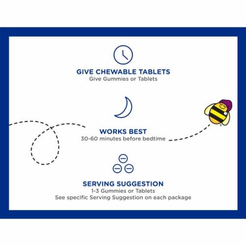 Zarbee's Naturals Children's Sleep with Melatonin Natural Berry Flavor Gummies Perspective: top