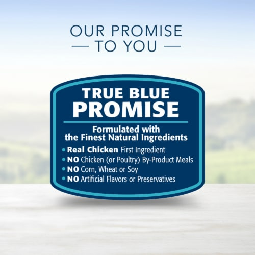 Blue Buffalo Life Protection Formula® Chicken & Brown Rice Recipe Adult Dog Food Perspective: top