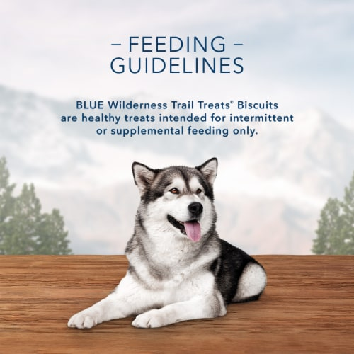 Blue Wilderness Trail Treats Salmon Recipe Grain-Free Biscuits Biscuits Dog Treats Perspective: top