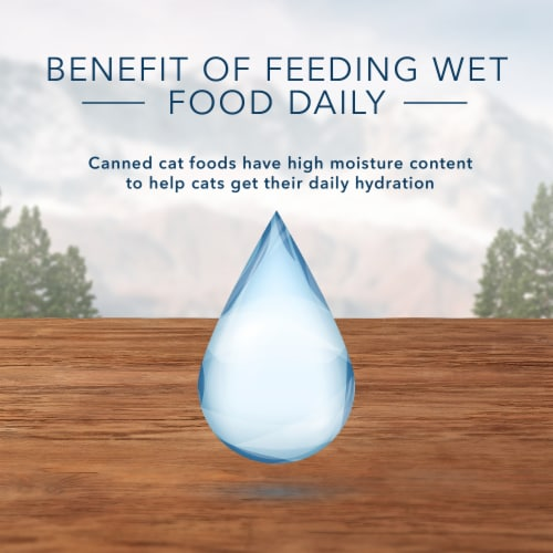 Blue Wilderness High Protein Grain Free Chicken Recipe Natural Kitten Pate Wet Cat Food Perspective: top