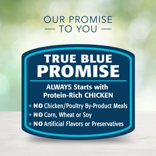 Blue Buffalo Freedom Grain-Free Chicken Recipe for Small Breeds Dog Food Perspective: top