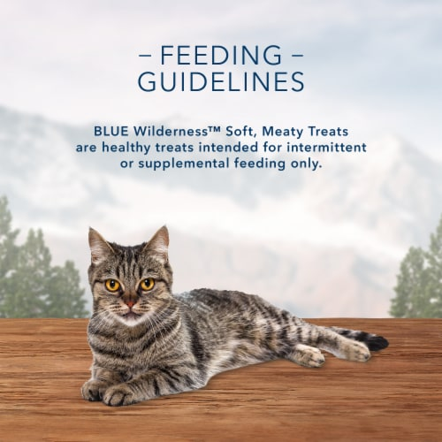 Blue Buffalo Wilderness Chicken & Turkey Recipe Soft-Moist Cat Treats Perspective: top