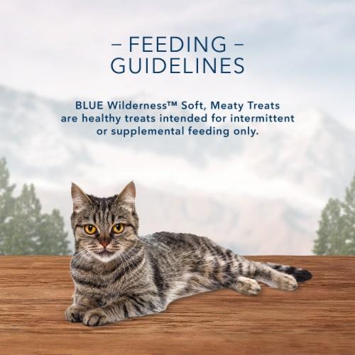 Blue Buffalo Wilderness Chicken & Trout Recipe Cat Treats Perspective: top
